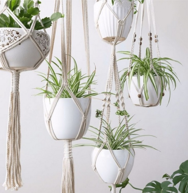 Marvelous Hanging Plants Ideas Image