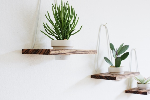 Marvelous Modern Wall Planter Image