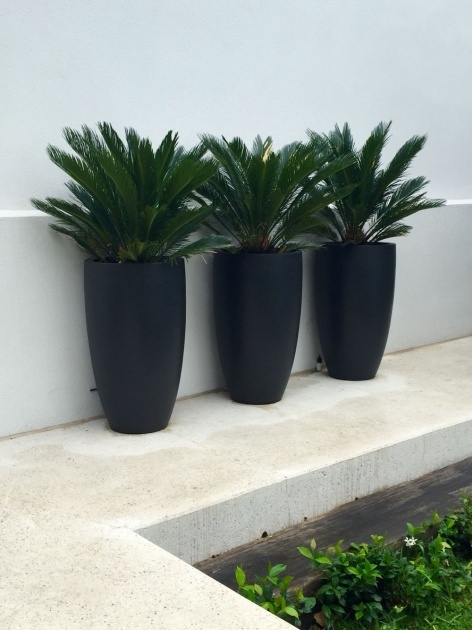 Marvelous Tall Black Outdoor Planters Image