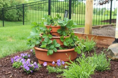 3 Tier Strawberry Planter
