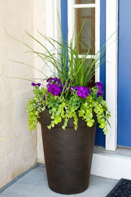 Most Creative Best Flowers For Planters Photo
