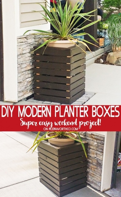 Most Creative Diy Modern Planter Image