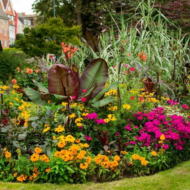 Most Creative Flower Bed Plants Image