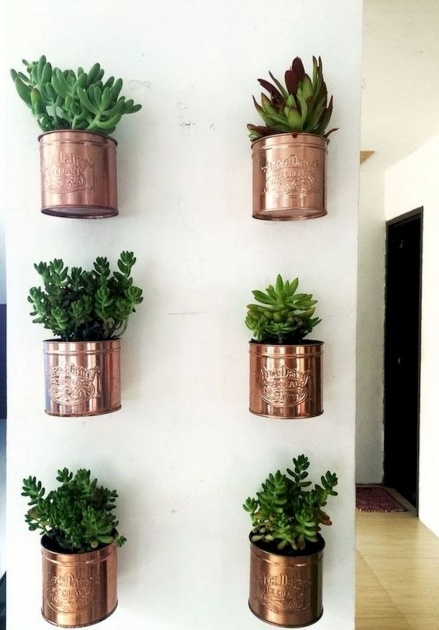 Most Creative Hanging Wall Planters Indoor Photo