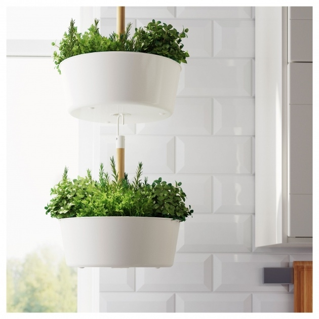 Most Creative Ikea Hanging Planter Image