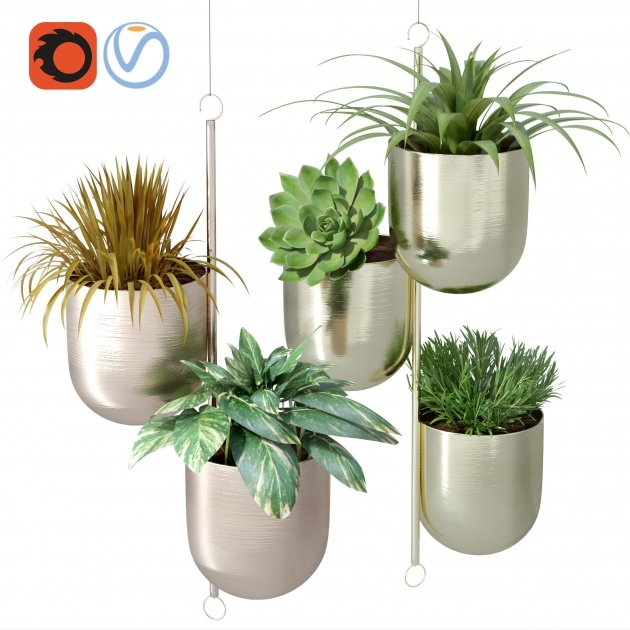 Most Creative Indoor Plant Pots Picture