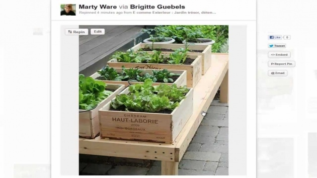 Most Creative Planter Boxes For Growing Vegetables Image