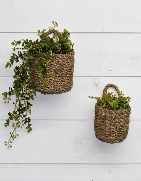 Most Creative Wall Baskets For Plants Photo