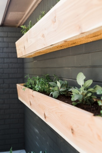 Most Creative Wall Mounted Planter Boxes Picture