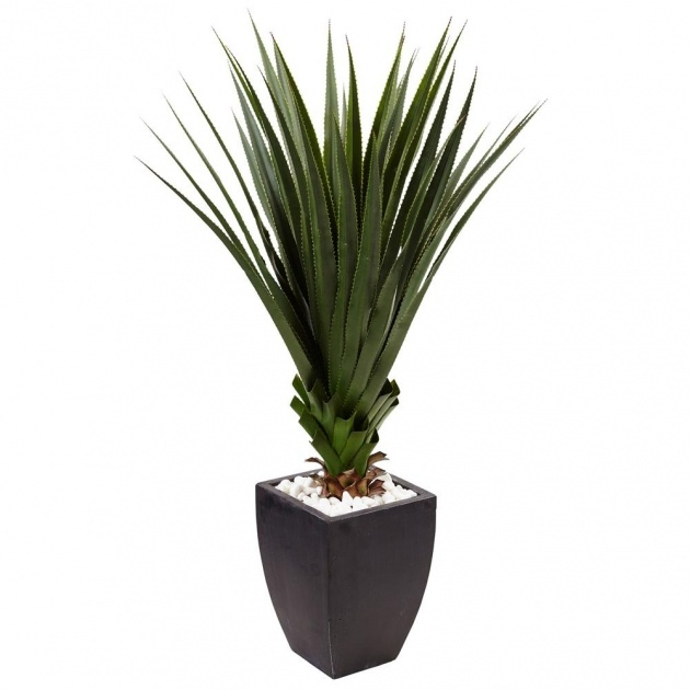 Most Perfect Artificial Outdoor Plants Image