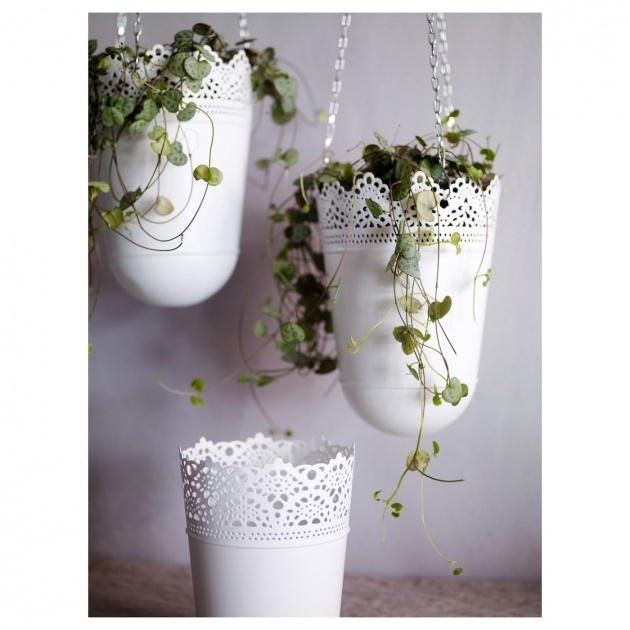Most Perfect Ikea Hanging Planter Picture
