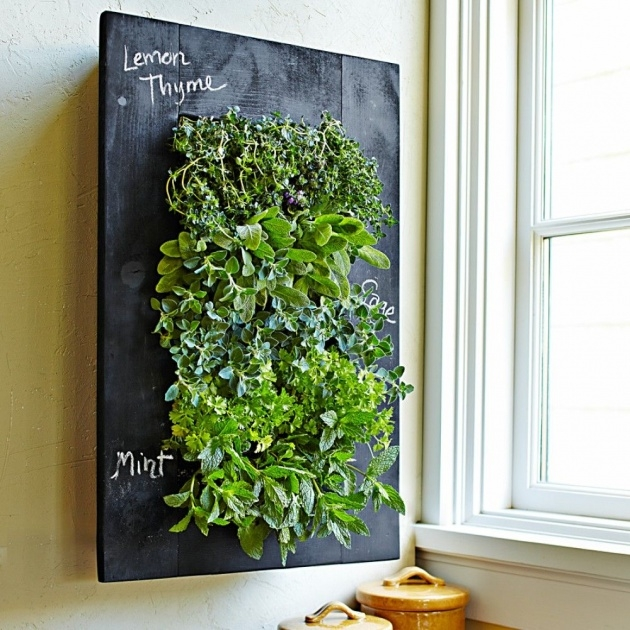 Most Perfect Living Wall Planter Image