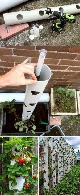 Most Perfect Pvc Pipe Planter Picture