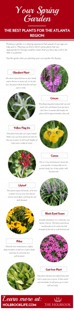Most Popular Best Garden Plants Image