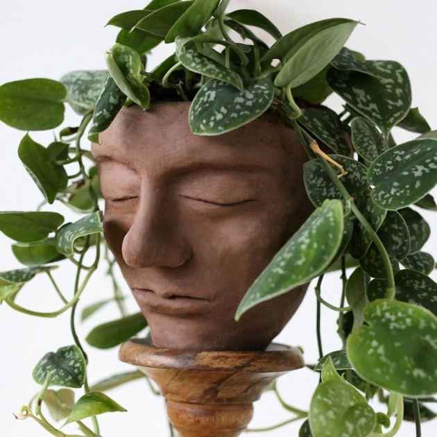 Most Popular Head Plant Pot Image