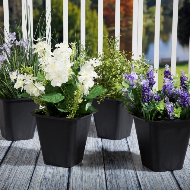 Most Popular Plant Pots Picture
