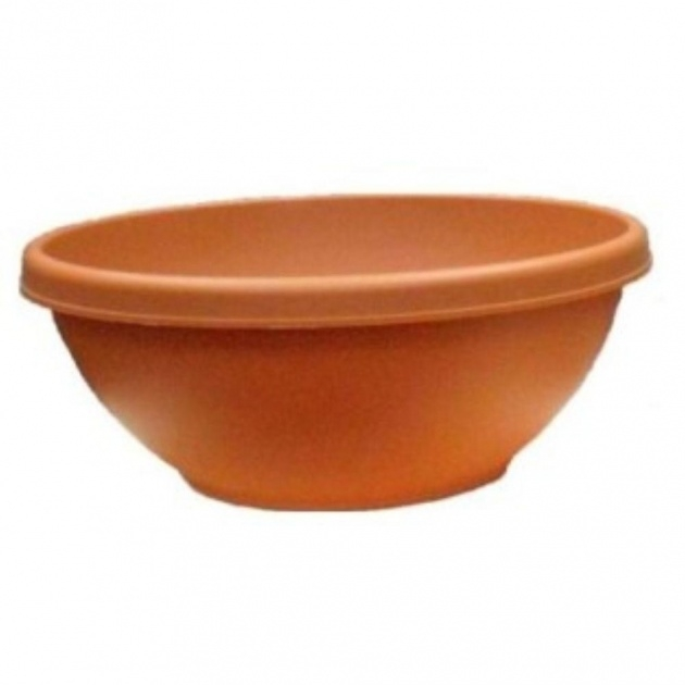 Most Popular Terracotta Bowl Planter Picture