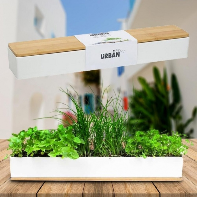 Most Popular Window Sill Planter Box Photo