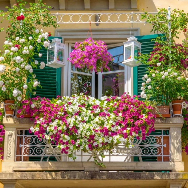 Outstanding Balcony Hanging Planters Picture
