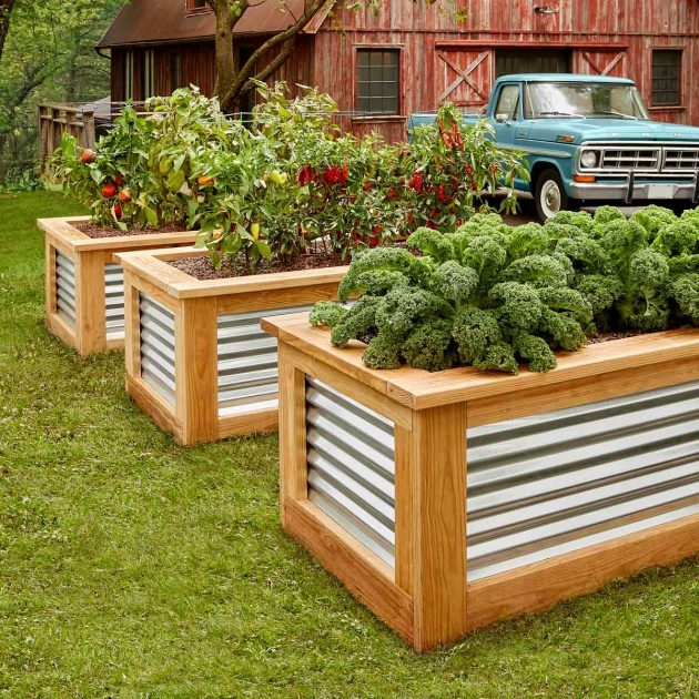 Outstanding Diy Vegetable Planter Box Photo