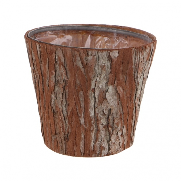 Outstanding Tree Bark Planters Image