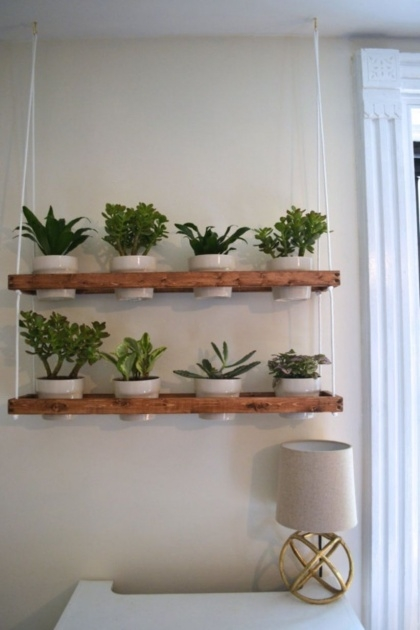 Outstanding Wall Planters Indoor Image
