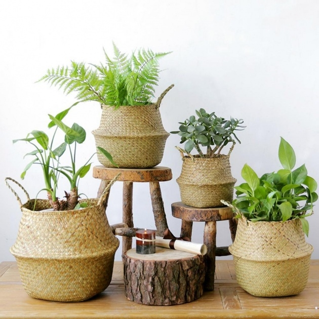 Outstanding Woven Plant Basket Photo
