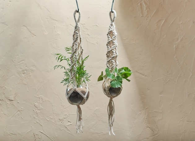 Perfect Macrame Plant Hanger Photo