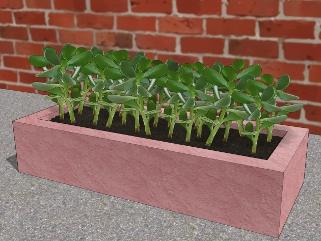 Perfect Making Concrete Planters Picture