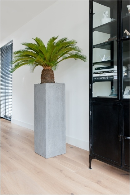 Perfect Modern Indoor Planters Picture