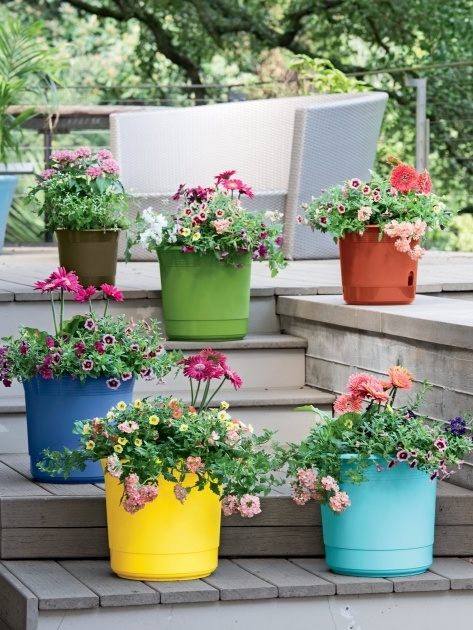 Perfect Pots And Planters Image