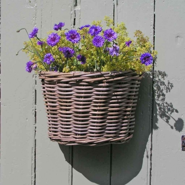 Perfect Wall Baskets For Plants Picture