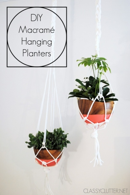 Popular Diy Hanging Planter Image
