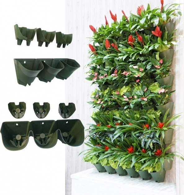 Popular Large Outdoor Wall Planters Picture