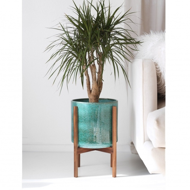 Popular Modern Plant Pot Picture