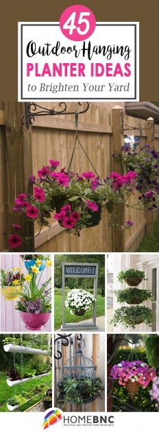 Popular Outdoor Hanging Plants Picture