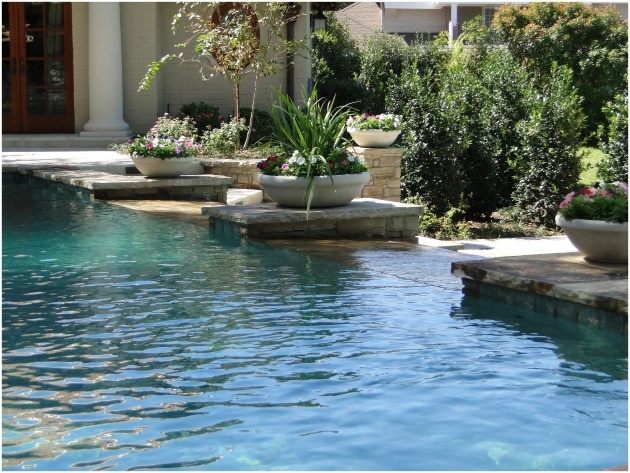 Popular Swimming Pool Planters Photo