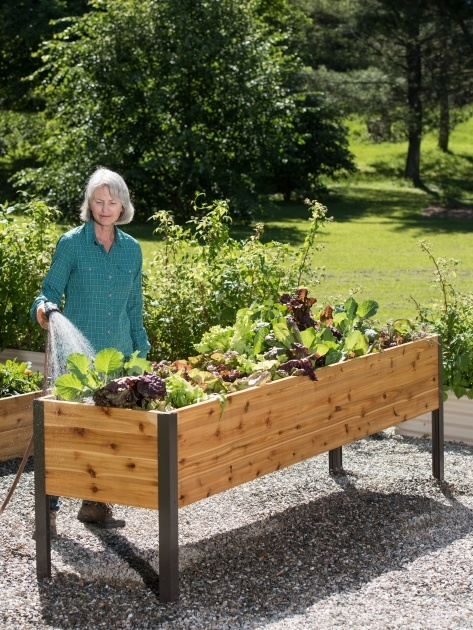 Popular Vegetable Garden Planter Box Image