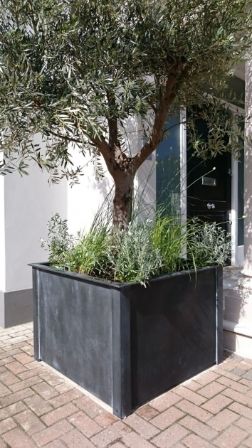 Remarkable Galvanised Steel Planter Image