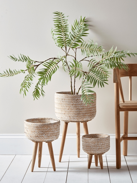 Remarkable Indoor Plant Pots Picture