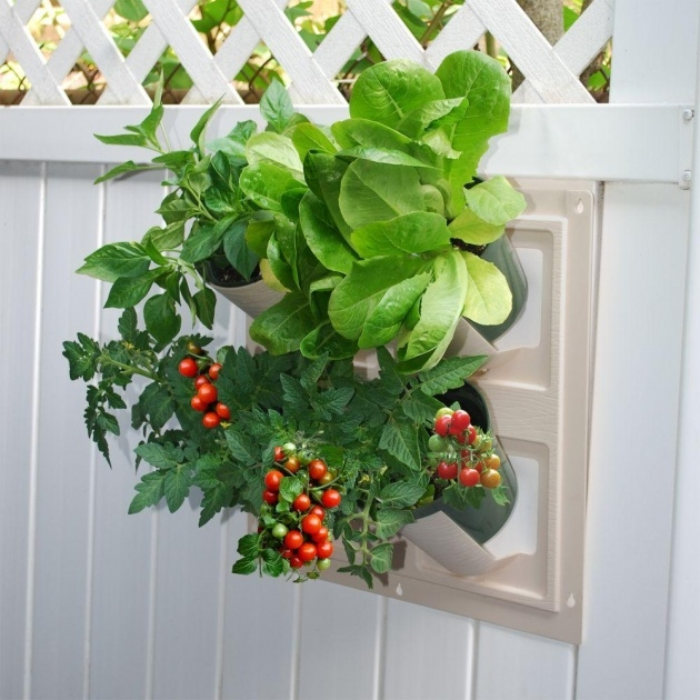 Remarkable Living Wall Planter Photo