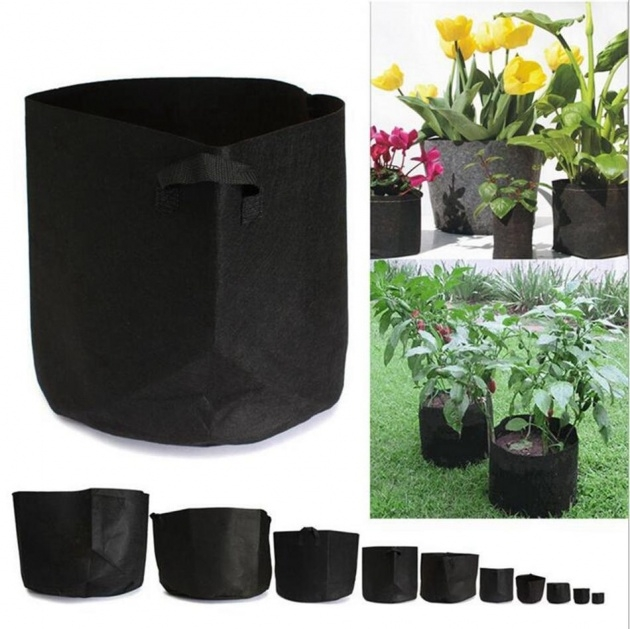 Remarkable Plastic Bag For Plants Picture