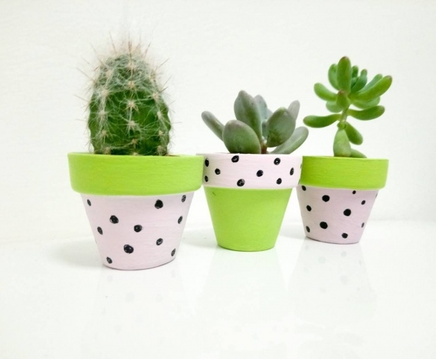 Remarkable Small Plant Pots Picture