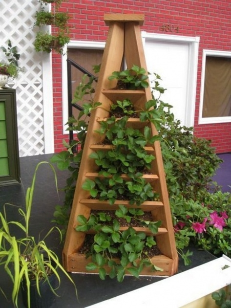 Remarkable Strawberry Tower Planter Image