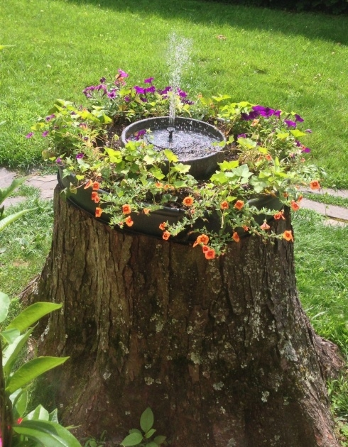 Remarkable Tree Stump Planter Image