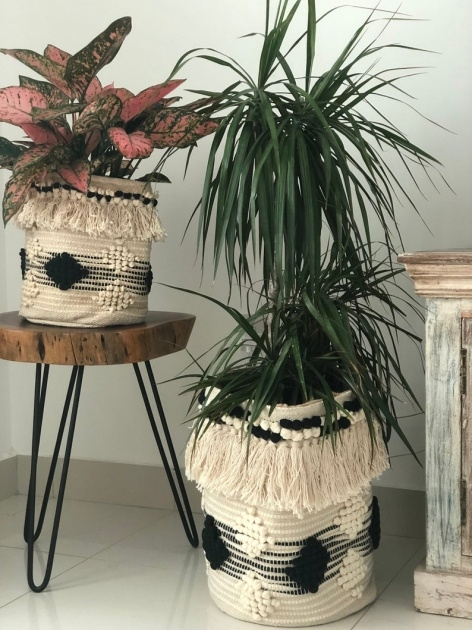 Remarkable Woven Plant Basket Picture