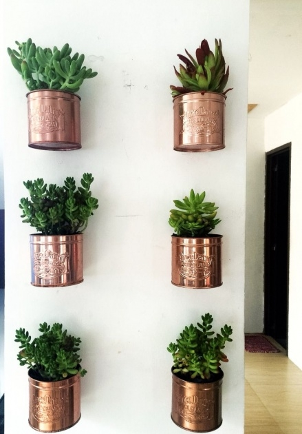 Sensational Diy Wall Planter Image