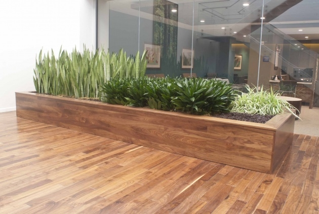 Sensational Indoor Planter Box Photo