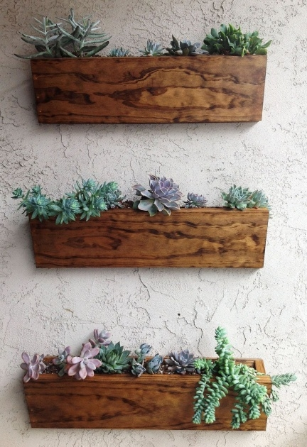 Sensational Wall Mounted Planter Boxes Image