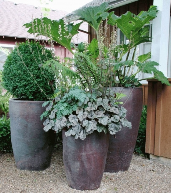 Simple Large Plant Pots Picture